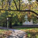 Béke park