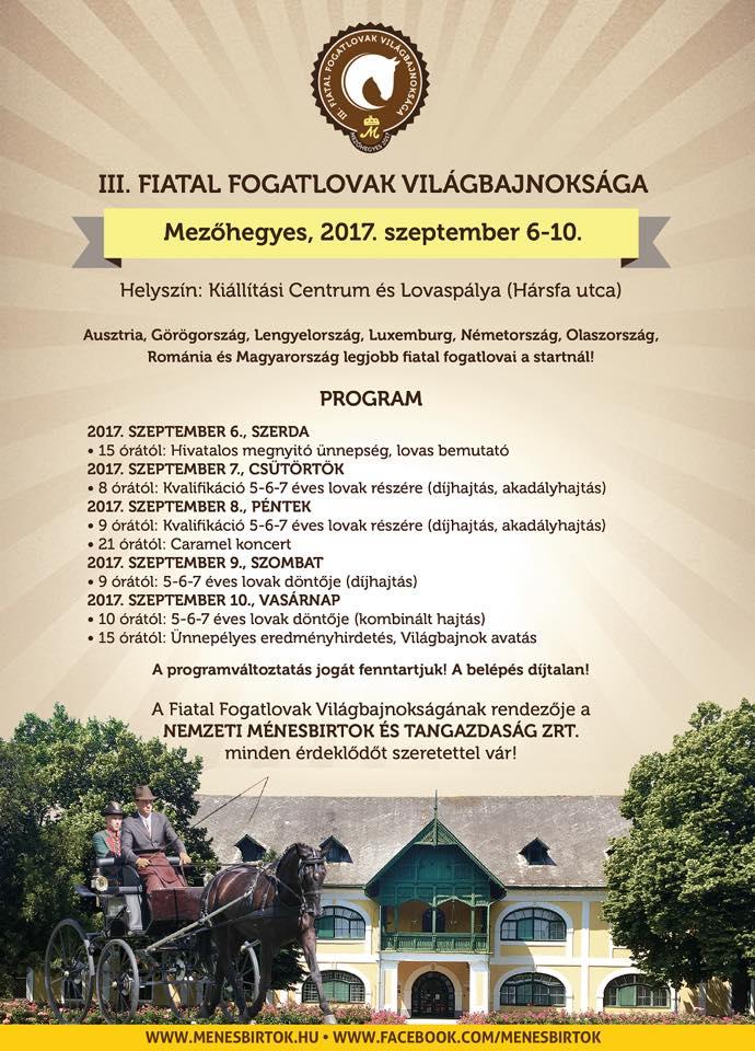 Fiatal_fogatlovakvb_2017