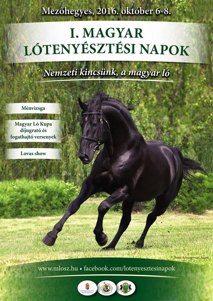 Lotenyesztesi_napok_mh