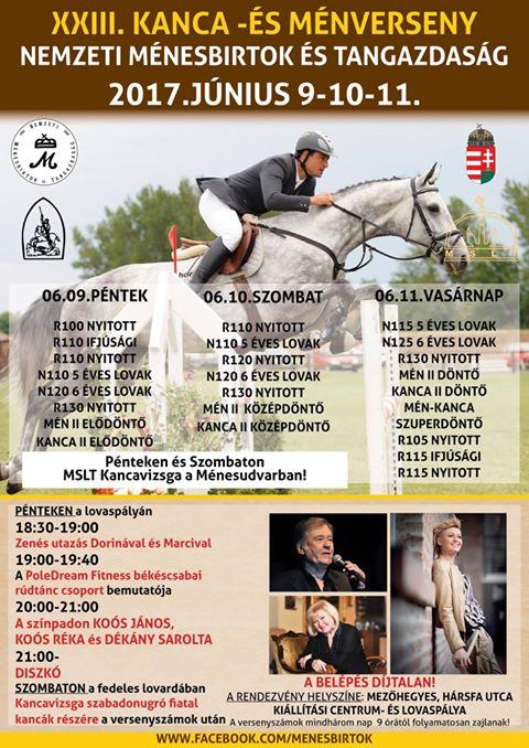 Mezőhegyesi Kanca- és Ménverseny_2017